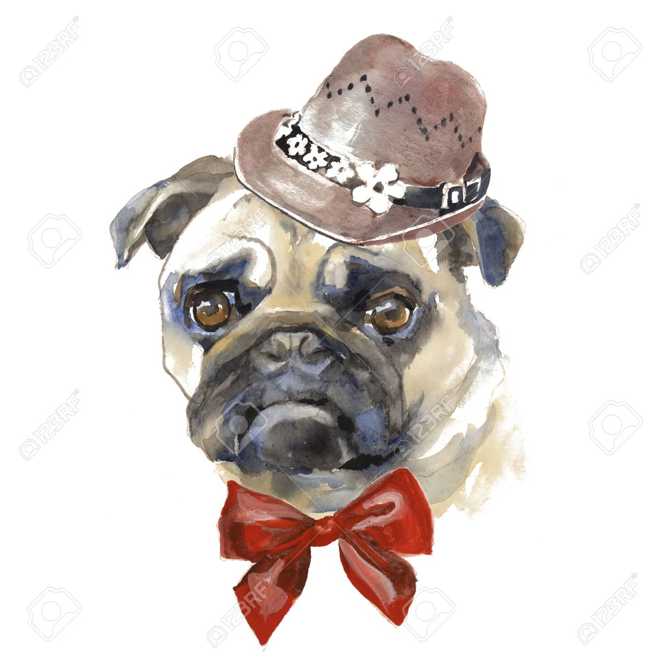 89d63aaabc74 Stock Photo - The Pug dog - hand painted, isolated on white background  watercolor fashion cute dogs portrait