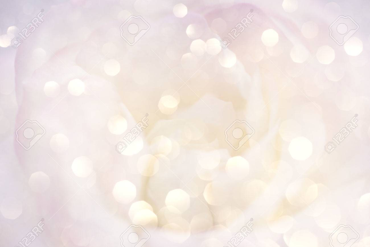 Romantic background with delicate rose close up. - 65879773