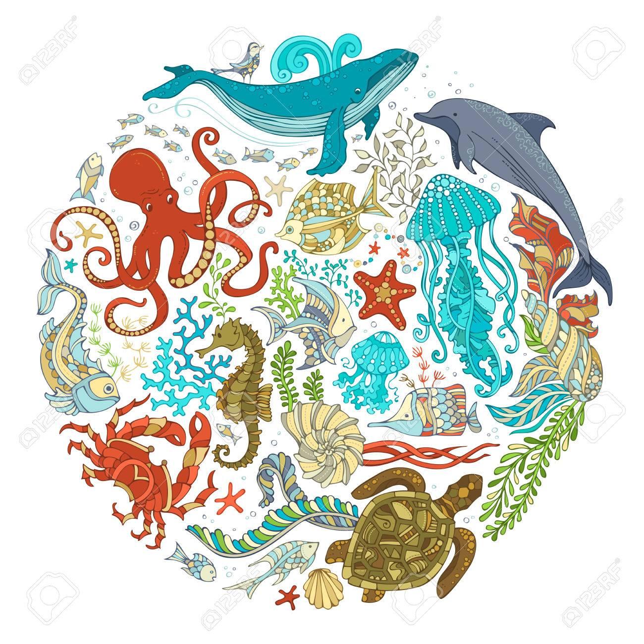 サークル ベクトルは、白い背景の上漫画シーライフ動物のセット