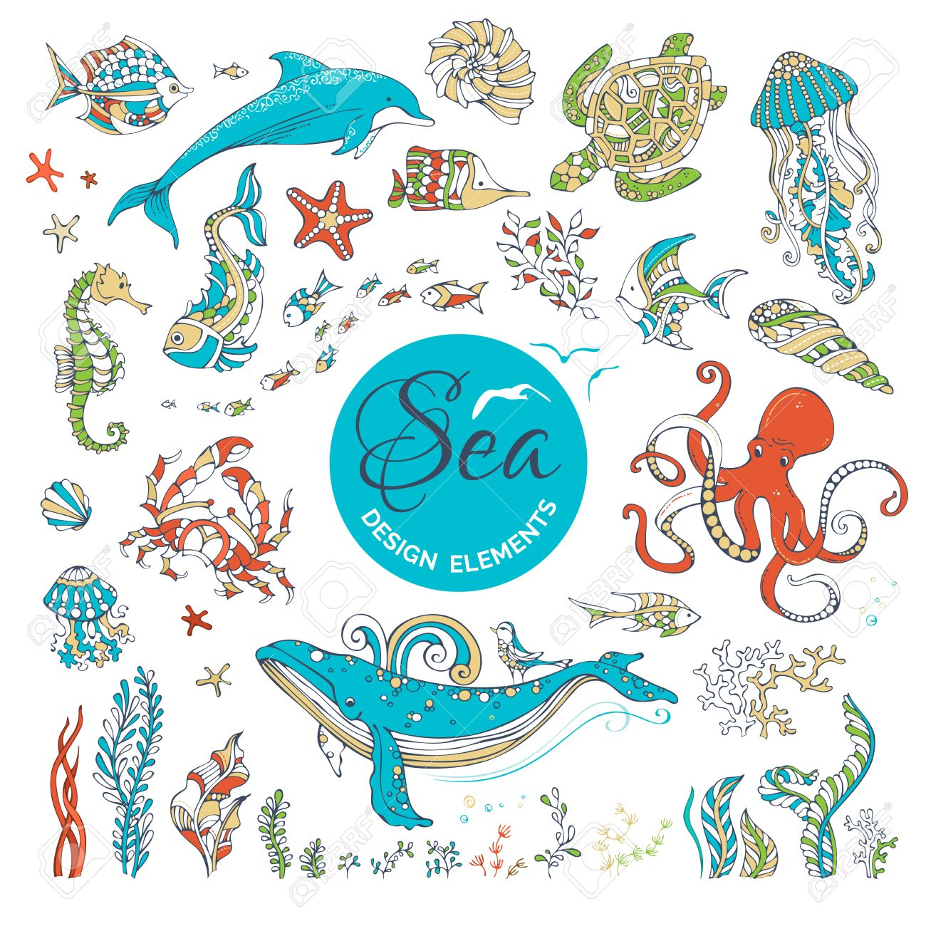 vector set of cartoon wild underwater sea life ocean animals