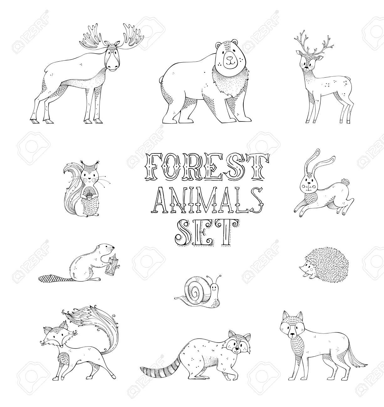 Vettoriale Riccio Disegnato A Mano Cervo Volpe Lepre