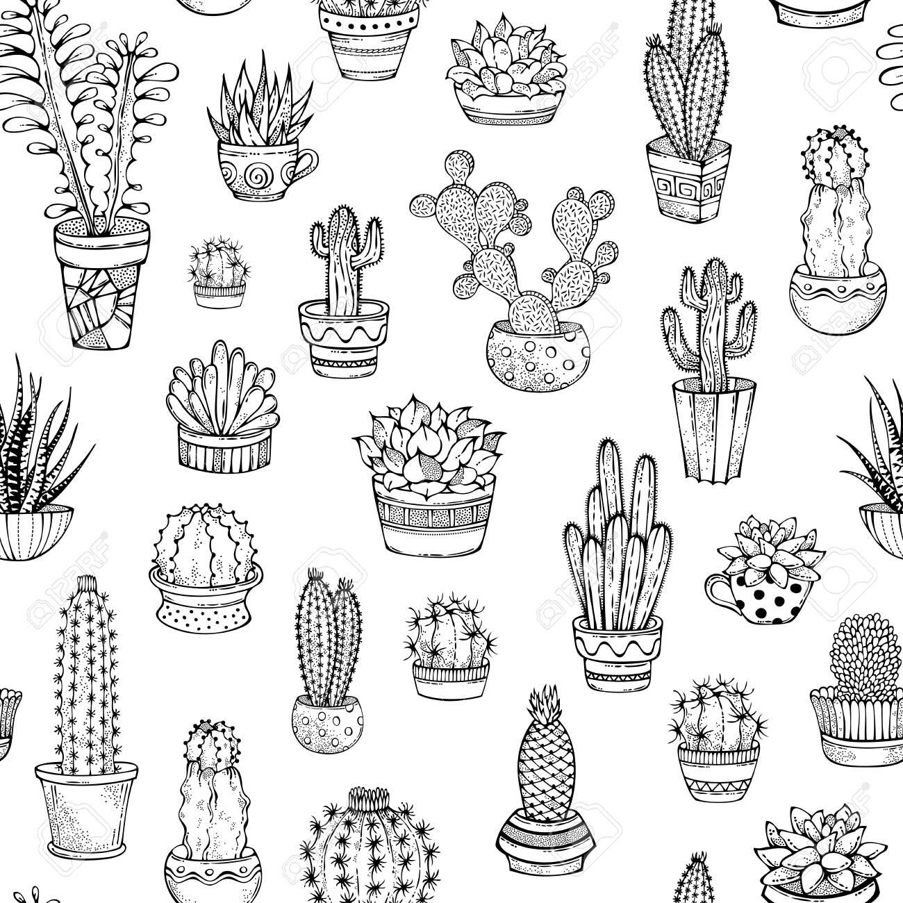 Varios Cactos Com Espinhos E Flores Em Vasos De Flores Ou Copos