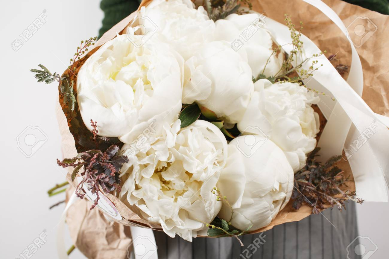 Fresh Bright Blooming Peonies Flowers On White Background Stock