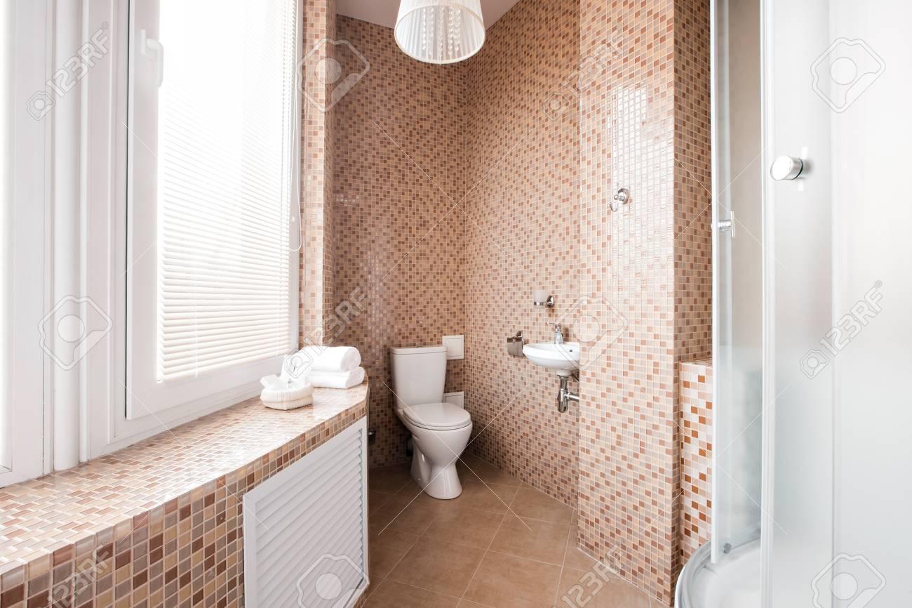Salle de bains moderne avec douche de douche et fenêtre intérieure .  intérieur design