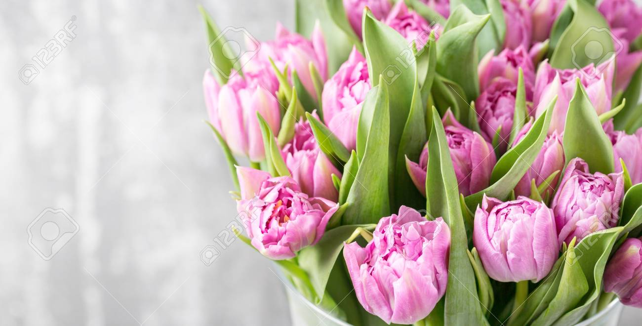 Bunch of purple tulips on light gray spring flowers grown in bunch of purple tulips on light gray spring flowers grown in holland stock photo mightylinksfo