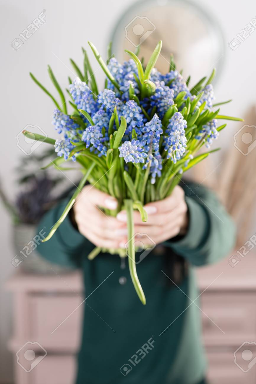 Beautiful Spring Flower Bouquet Delicate Female Hands Holding