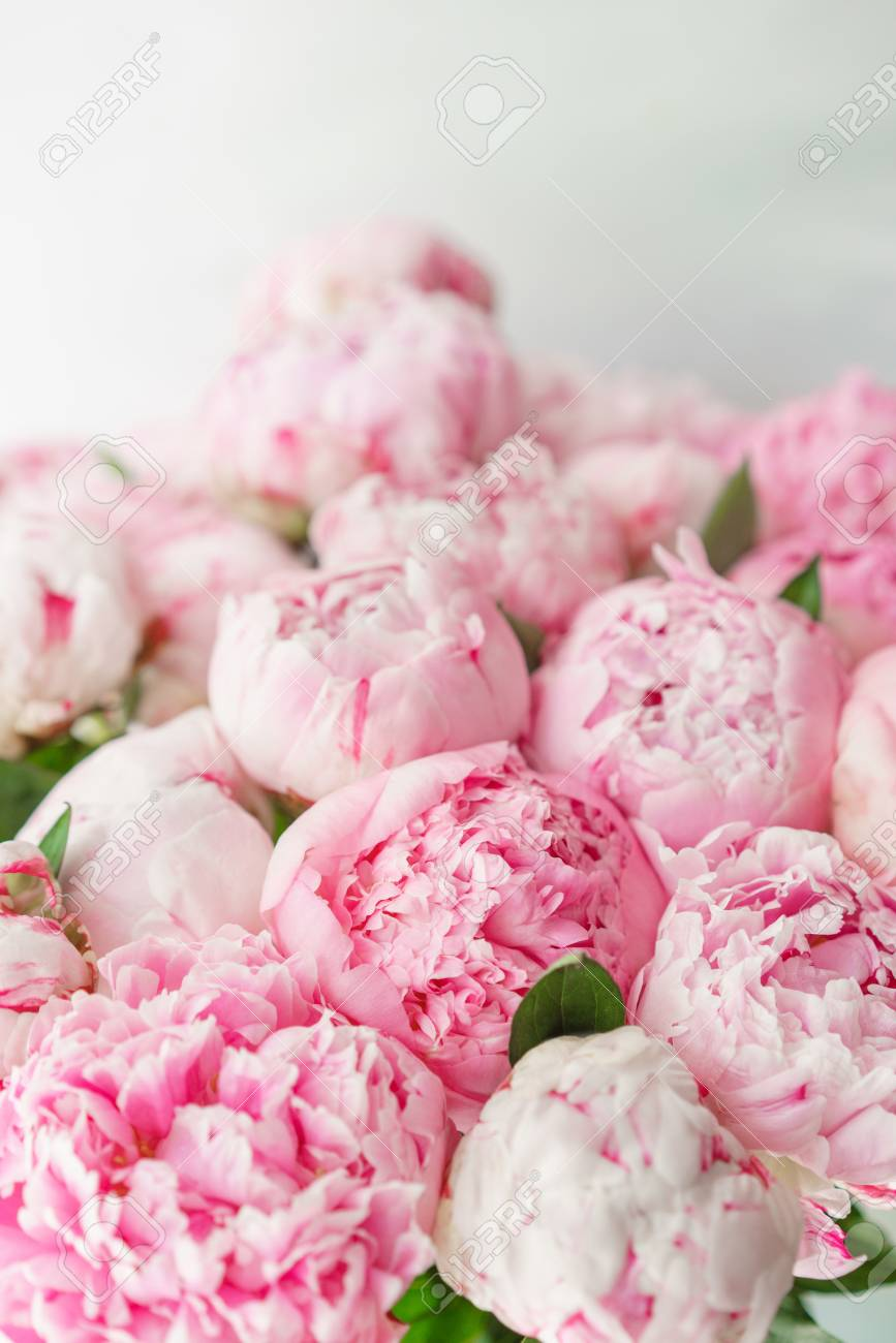 Pink Peonies Floral Composition Daylight Wallpaper Lovely