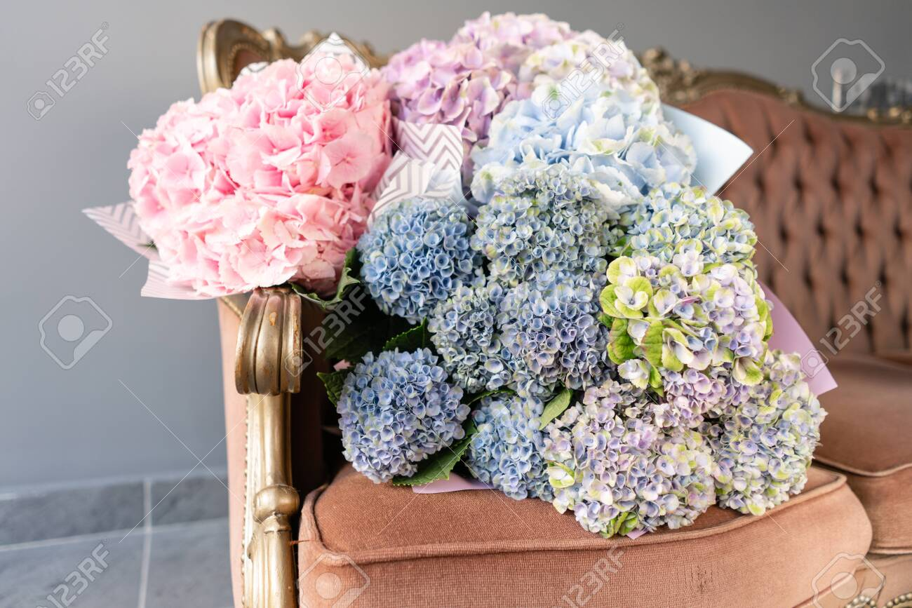 Bouquets Of Hydrangeas Lying On Vintage Sofa Small Beautiful Stock Photo Picture And Royalty Free Image Image 124531507