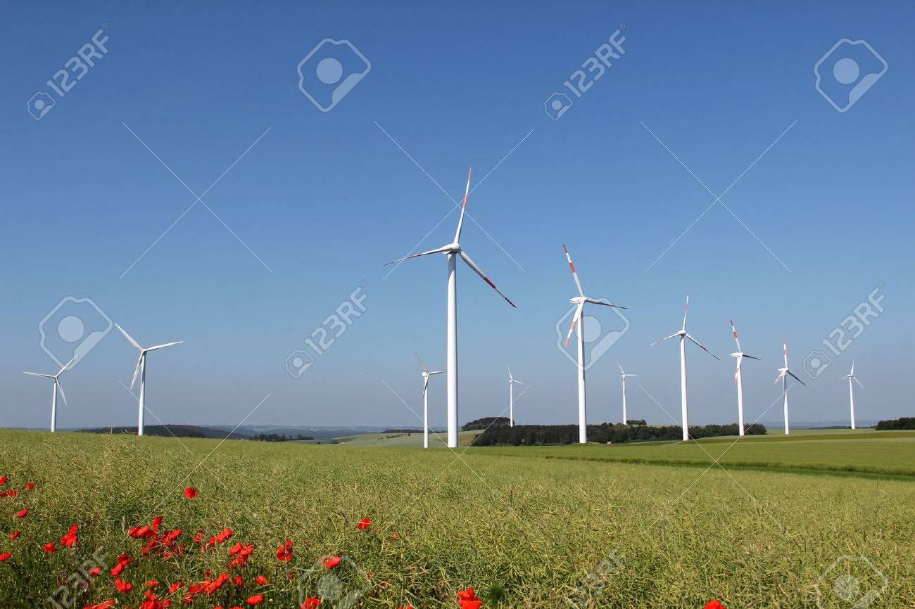 Windmill generator in wide yard. Yard of windmill power generatorunder blue sky, shown as energy industry concept. Standard-Bild - 44024001