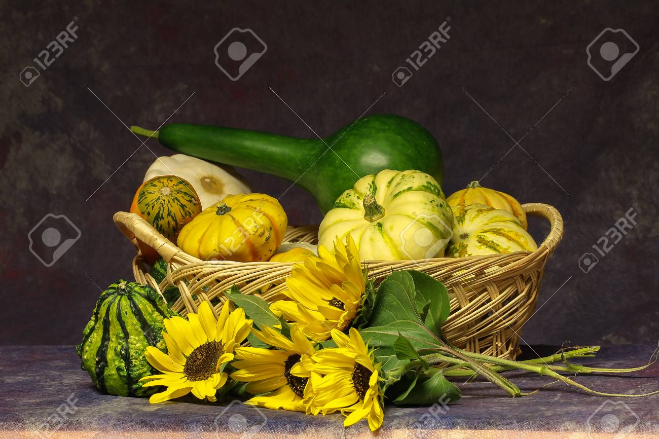 Autumn still life / Various decorative pumpkins on the table Standard-Bild - 86757826