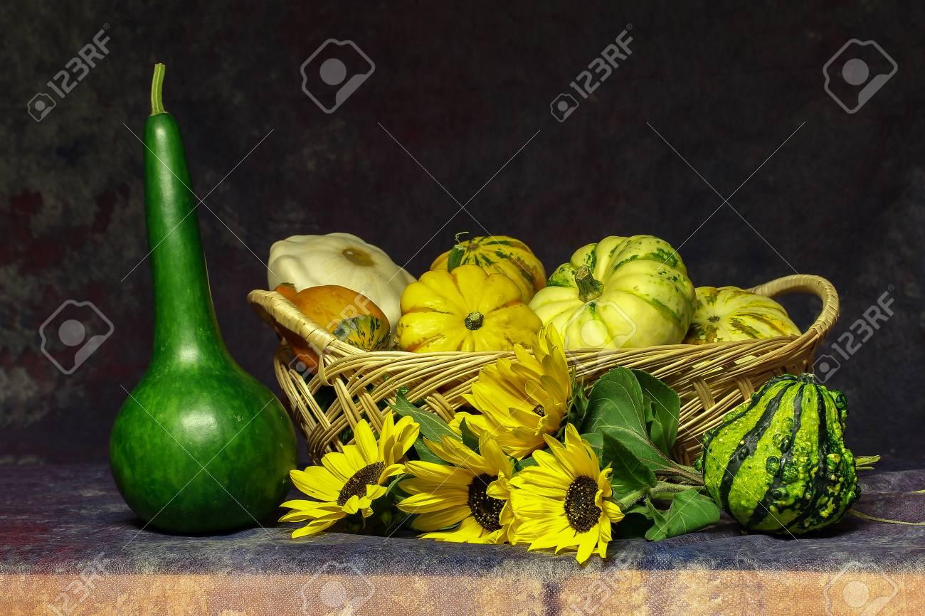 Autumn still life / Various decorative pumpkins on the table Standard-Bild - 86671732