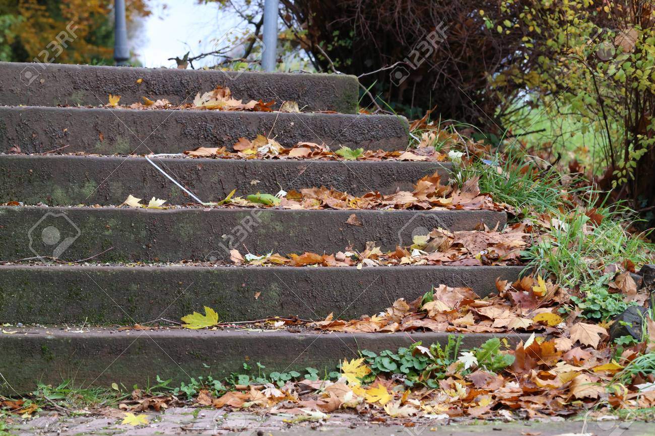 Autumn leaves lying on street in staircases Standard-Bild - 93127859