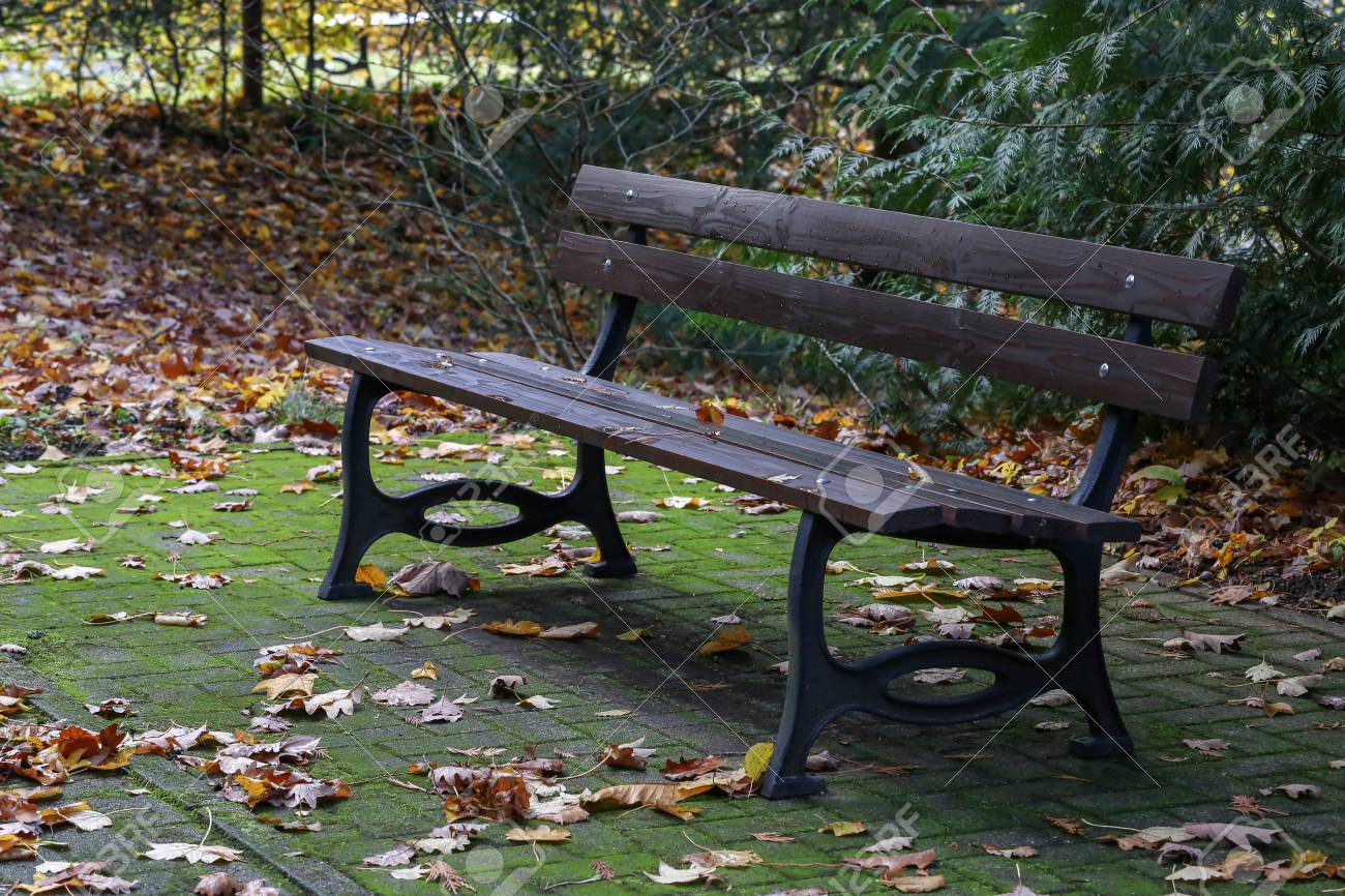 Autumn in the park leaves on a bench Standard-Bild - 92993630