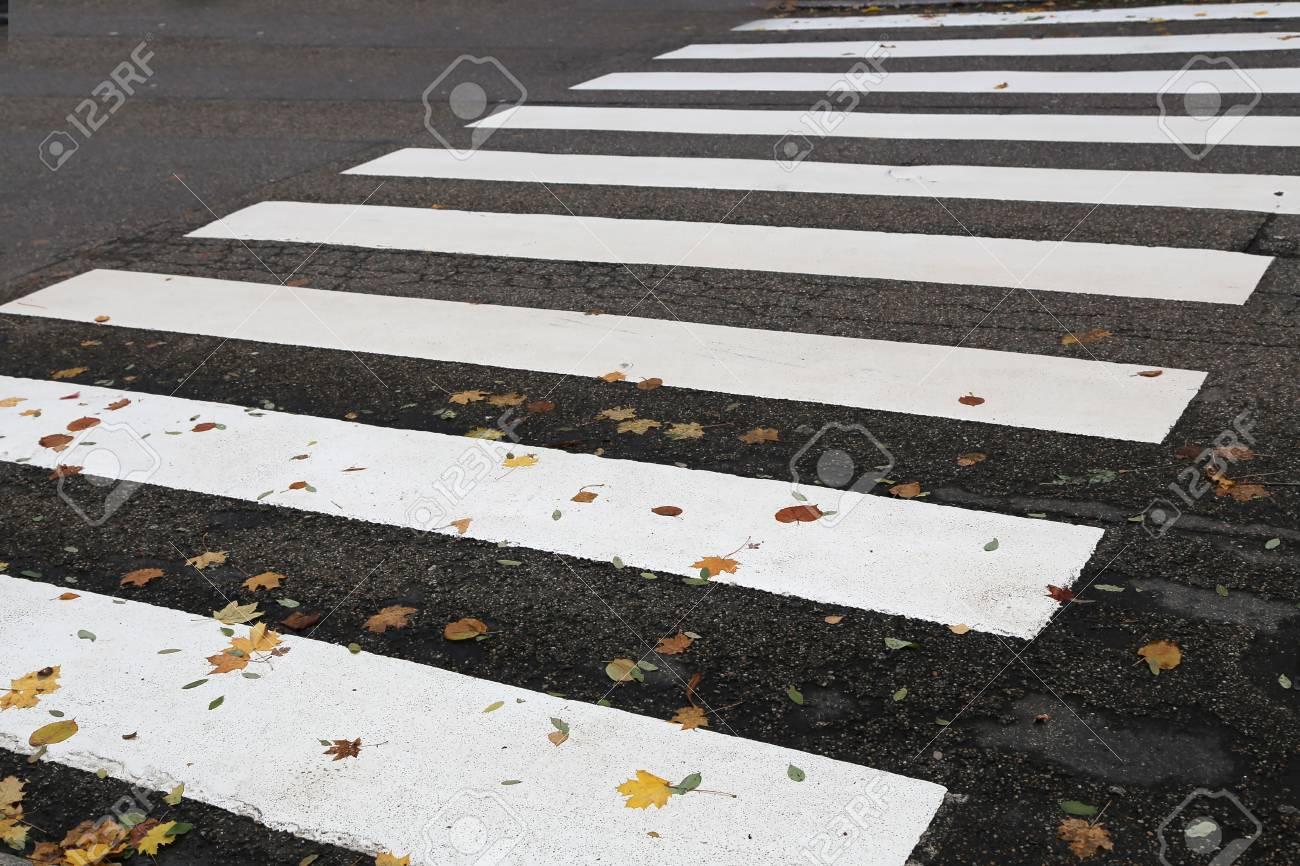 Pedestrian crossing streets in the shape of a zebra Standard-Bild - 93127861