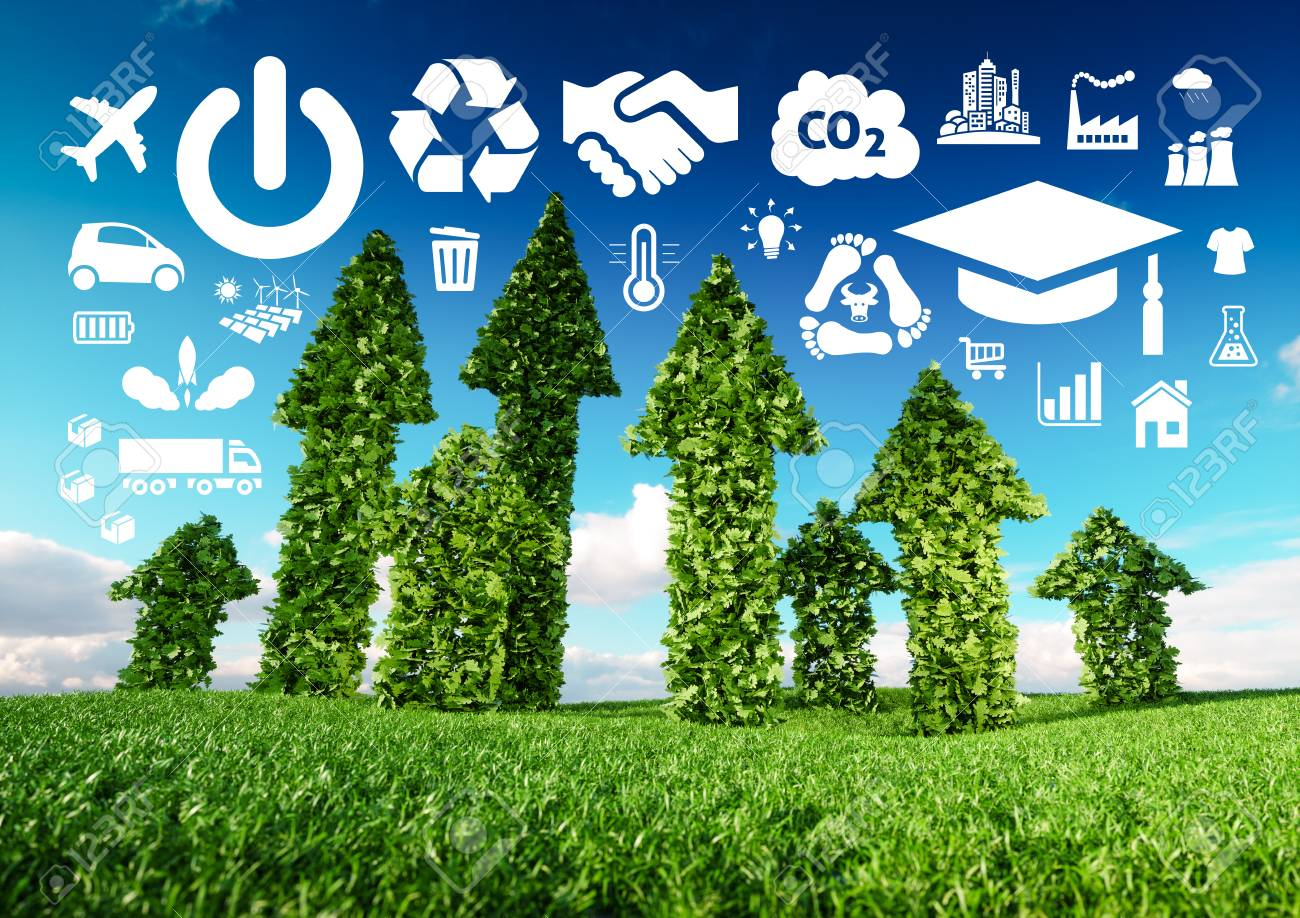 Sustainable development conceptual image. 3d illustration of fresh green leaf arrows growing from grass meadow and pointing toward ecology related icons. - 116005490