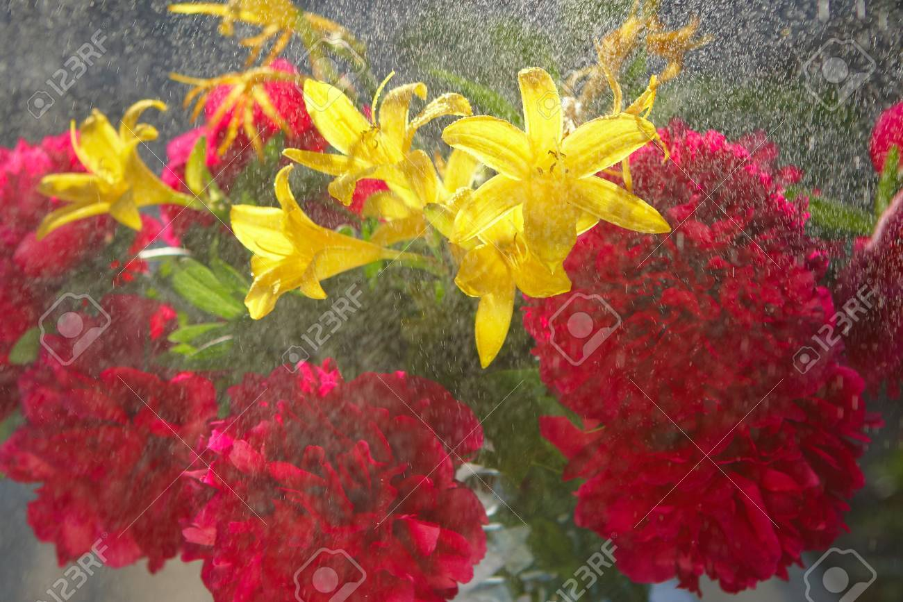 Summer Bouquet Flowers Or Background Art With Burgundy Yellow ...