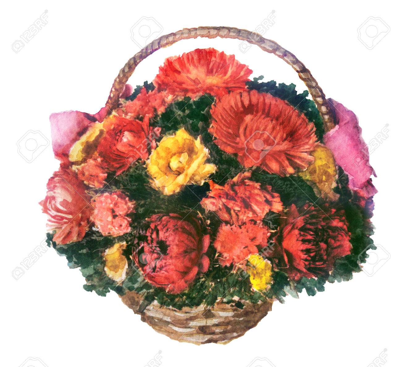 watercolor sketch of flowers in the basket on white background stock