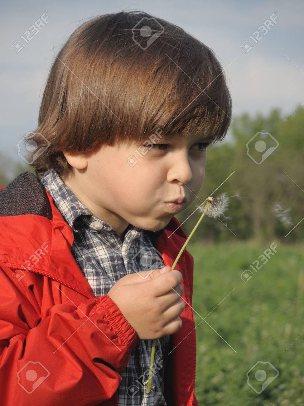 Beautiful little boy blowing dandelion. Happiness, fashionable concept. - 43075949