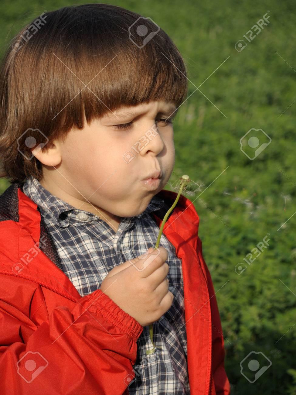 Beautiful little boy blowing dandelion. Happiness, fashionable concept. - 43075950