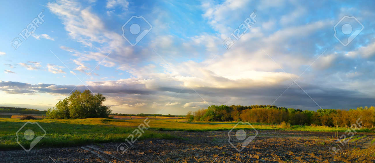 Picturesque panoramic scenery of the green agricultural field. Idyllic rural scene. Atmospheric spring landscape. Spring panoramic landscape with clouds. Rural landscape before sunset. - 163369792