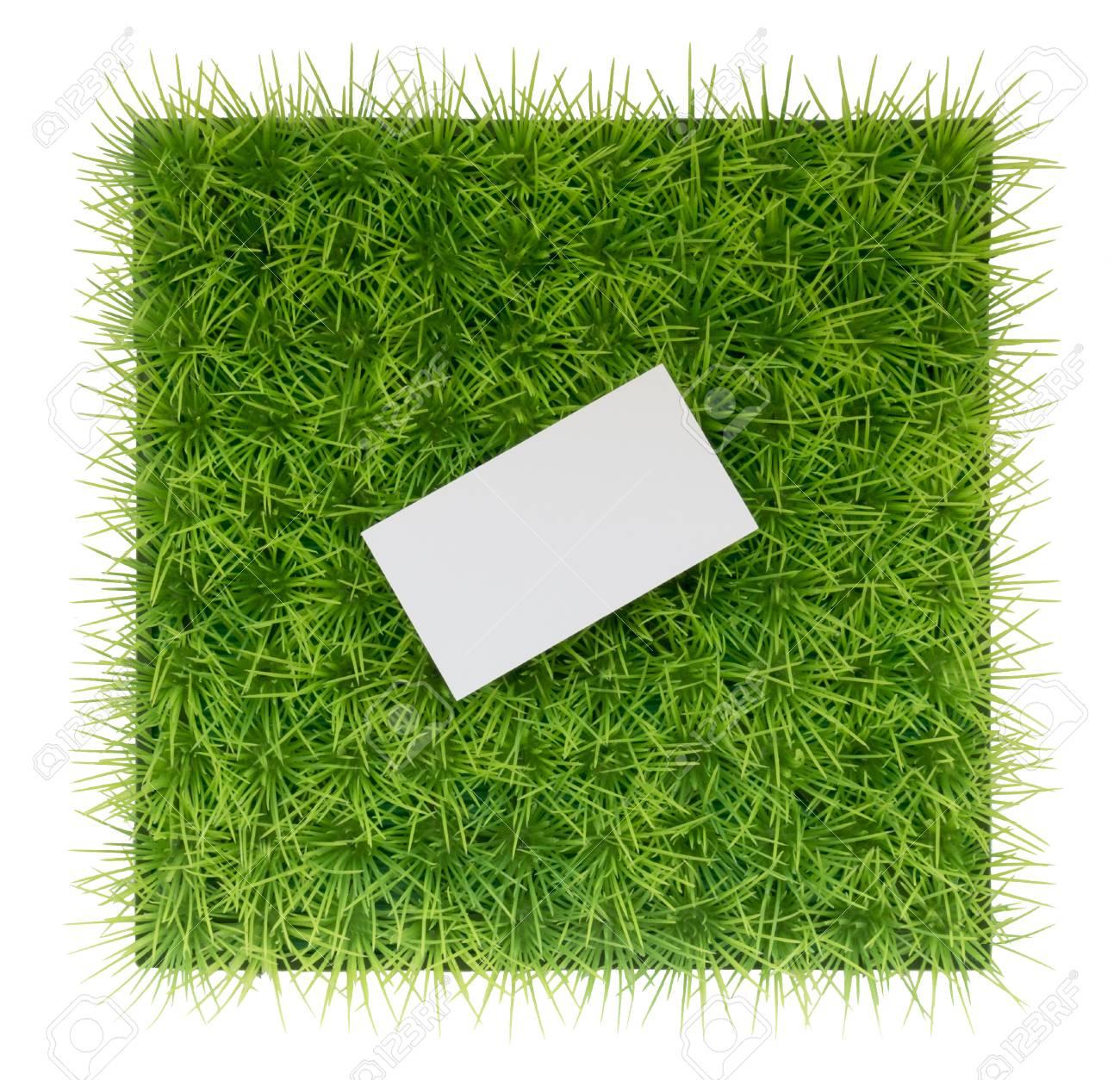 Fond Vert Naturel Avec De Lherbe Verte Et Une Carte Visite