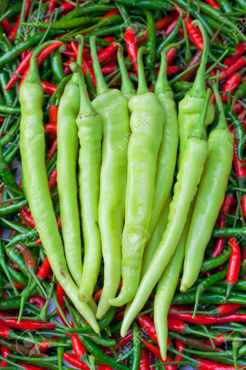 green chili Stock Photo - 13035778