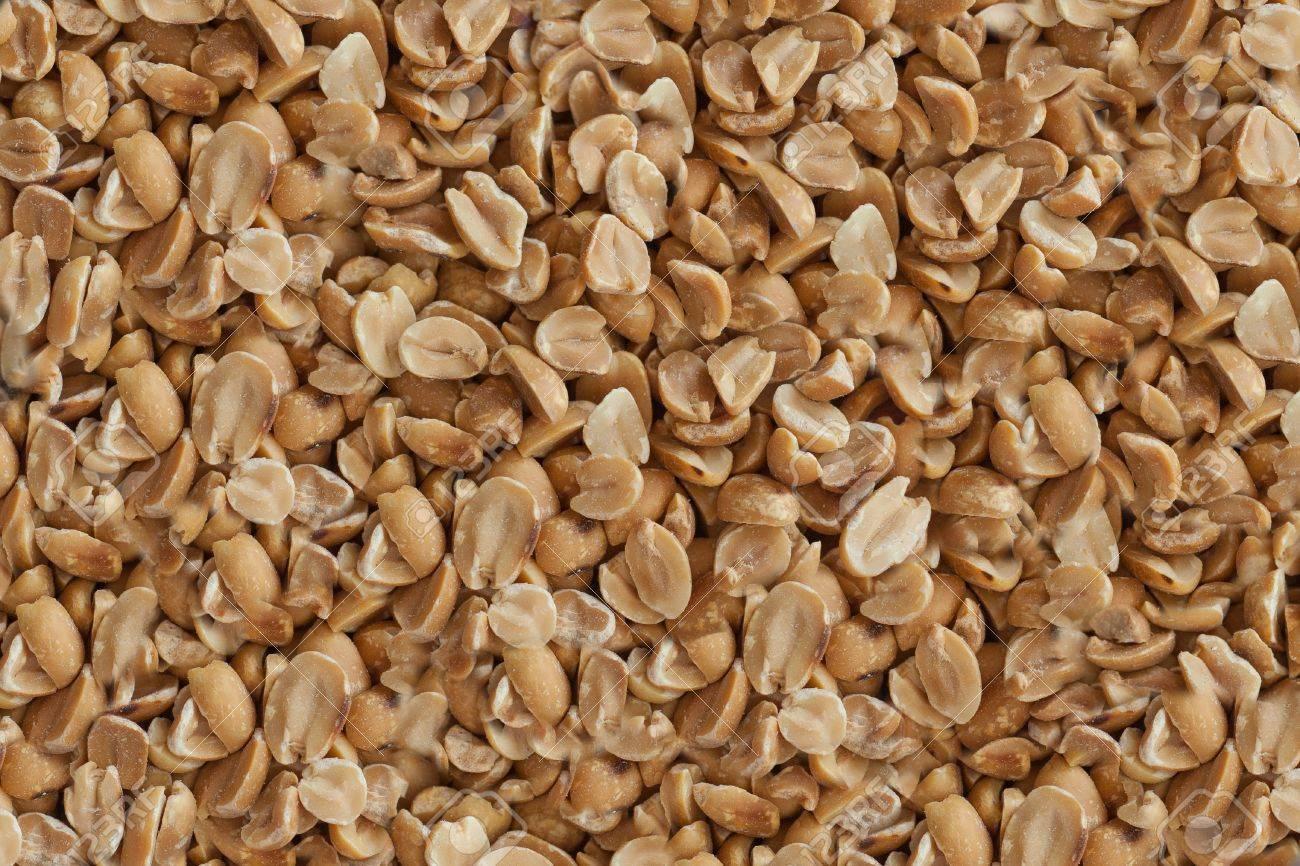 nut Stock Photo - 13035779