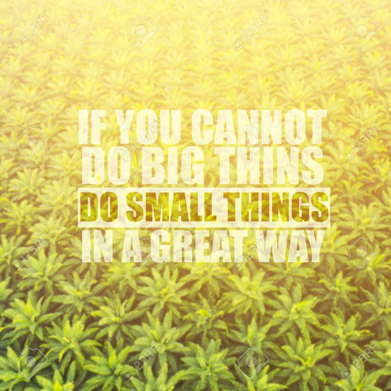 Life Inspirational Quotes With Phrase If You Cannot Do Big Things