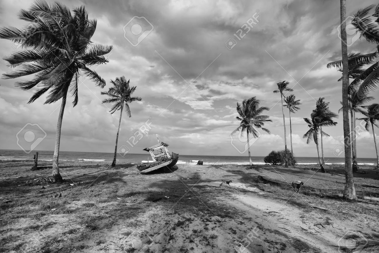 Scenery Pictures Black And White