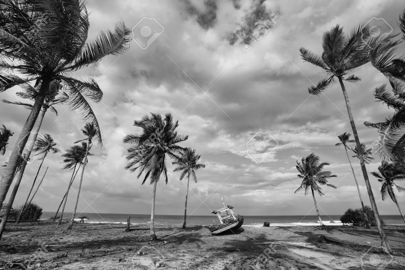 Black and white scenery of fisherman village with coconut tree boat and beach stock photo