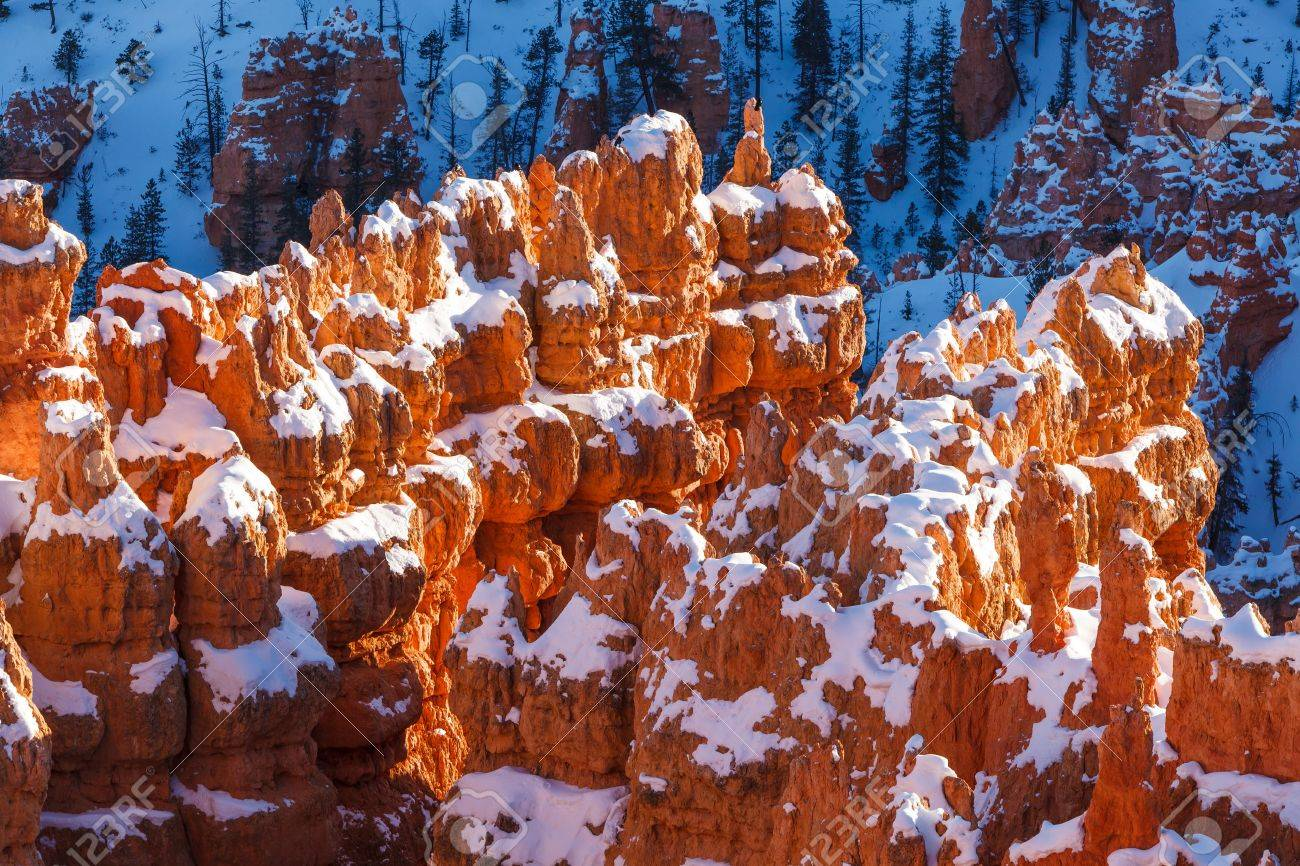 Bryce Canyon National Park Snowy Winter Landscape Stock Photo - 17321497