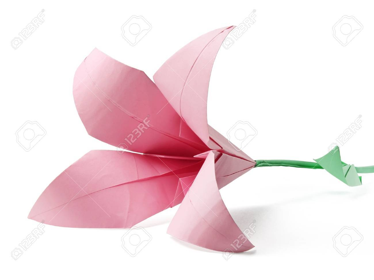 pink weddind origami lily on a white background Stock Photo - 13796711