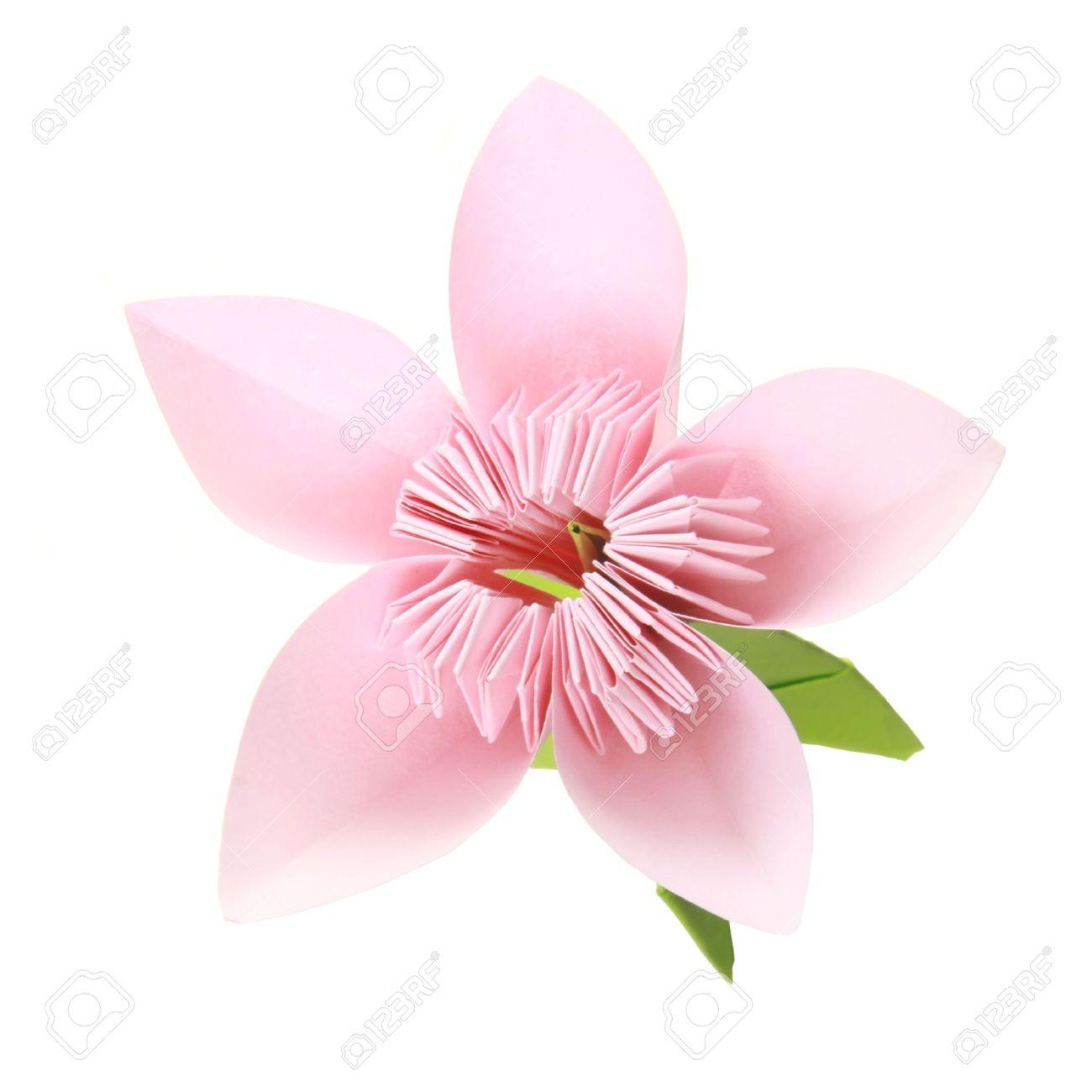 Origami pink sakura flower on a white background stock photo origami pink sakura flower on a white background stock photo 18419684 dhlflorist Images
