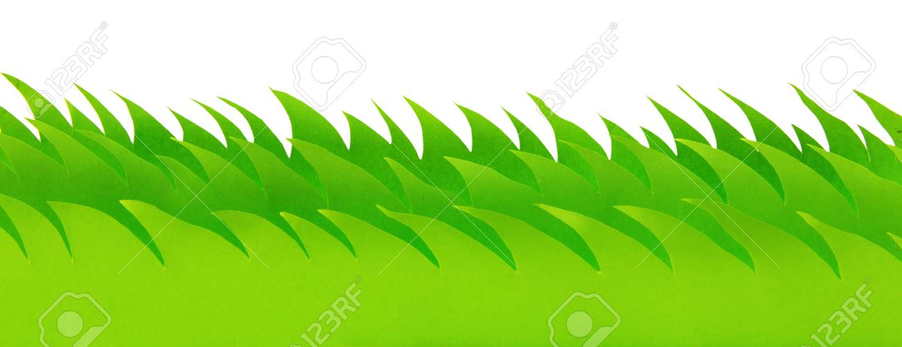 Green paper grass field isolated on a white background Stock Photo - 20276591