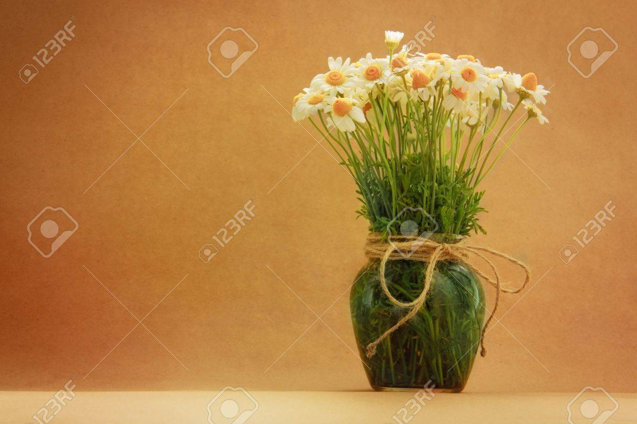 Chamomile flower still life in vintage stile on a brown paper background Stock Photo - 20276624