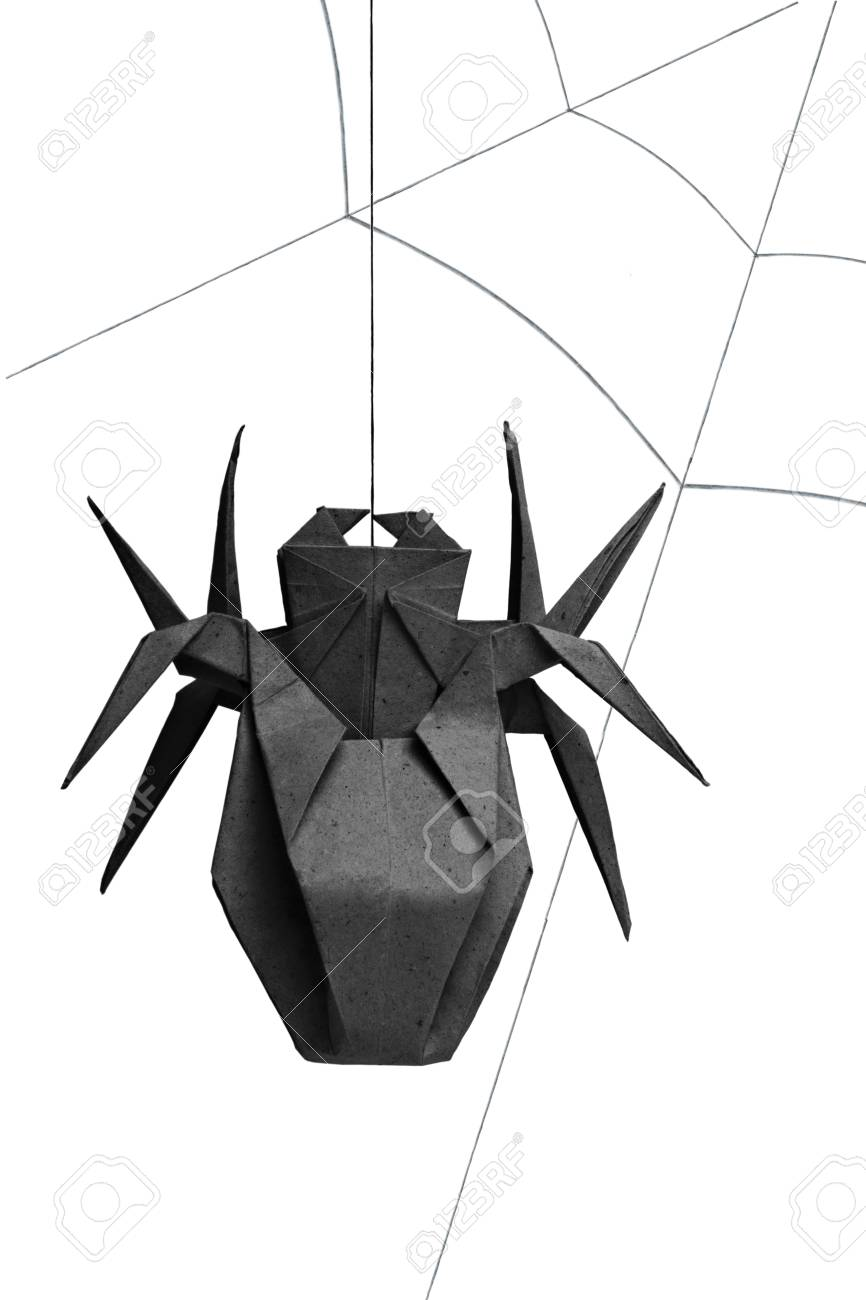 Origami Spider Isolated Stock Photo Picture And Royalty Free Image