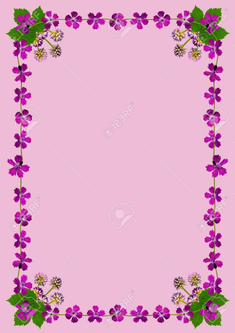 Marco Con Flores De Color Púrpura En Fondo Rosado En Formato DIN ...