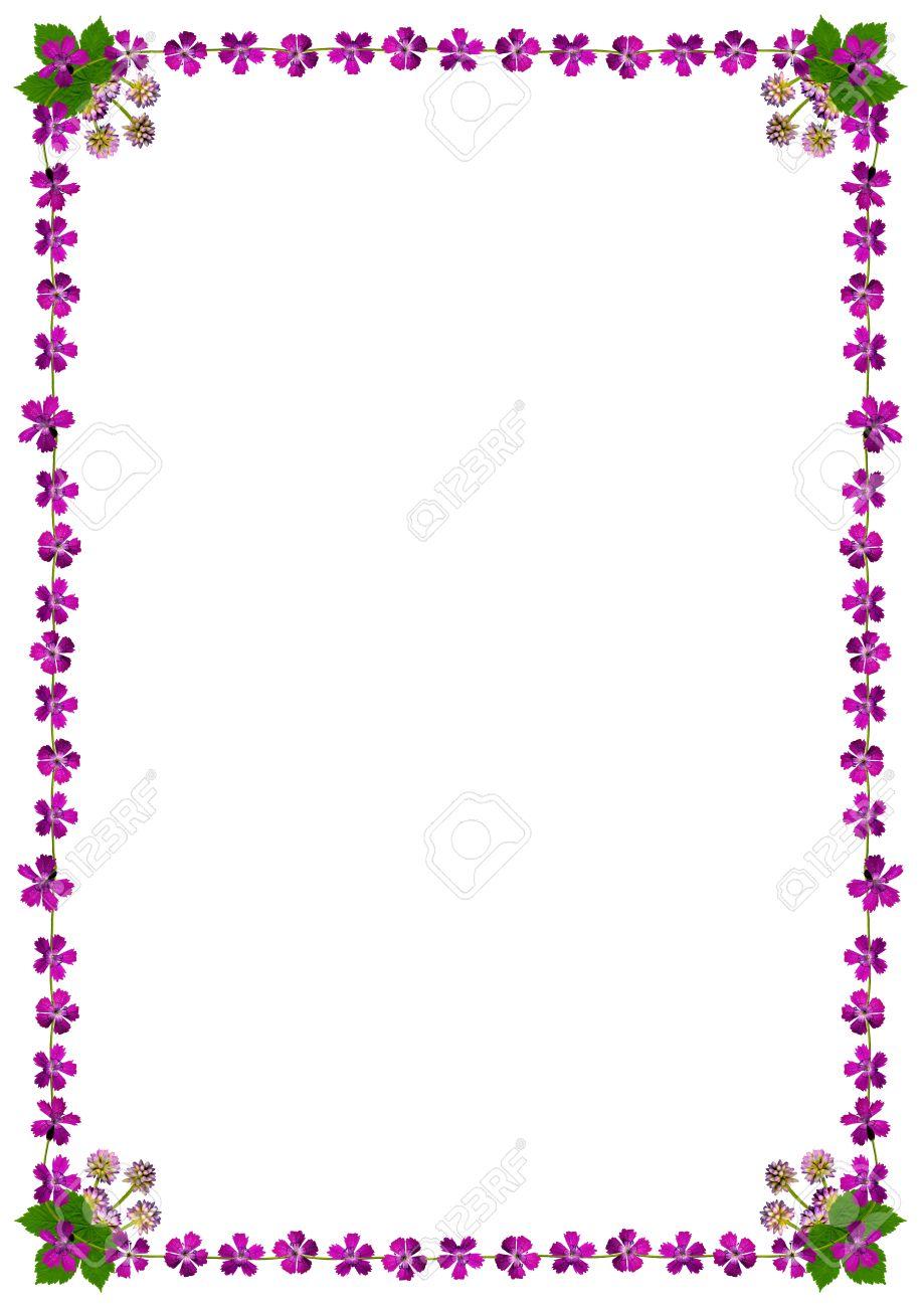 Marco Con Flores De Color Púrpura Sobre Fondo Blanco En Formato DIN ...