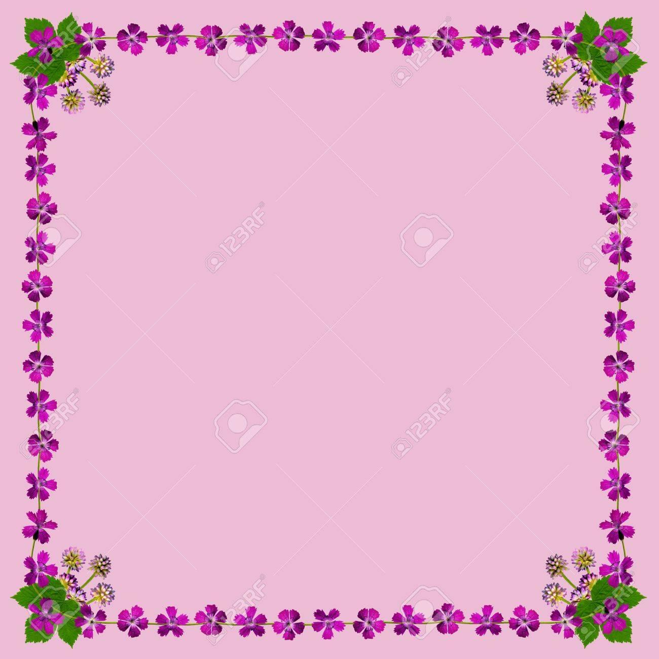 Marco Con Flores De Color Púrpura En Fondo Rosado En Formato ...