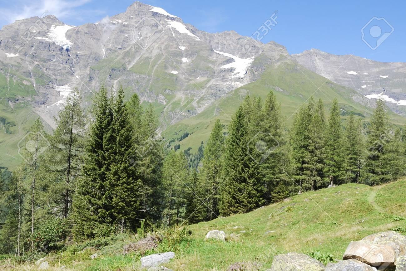 Mountain view in Austria at the Grossglockner Hochalpenstrasse (high alpine road). Stock Photo - 7916039