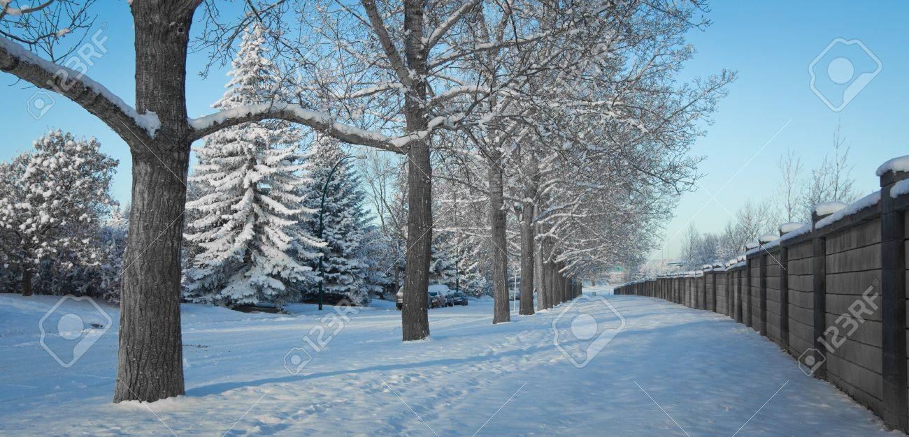 Winter Calgary Alberta