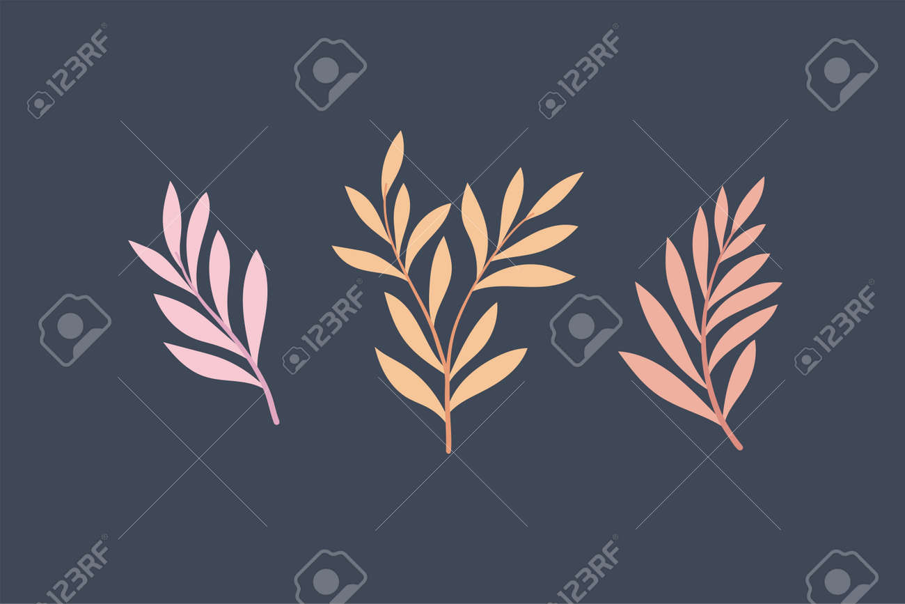 Set of vector floral elements. Hand drawn leaves isolated. Botanical illustration for decoration, print design. - 168265019