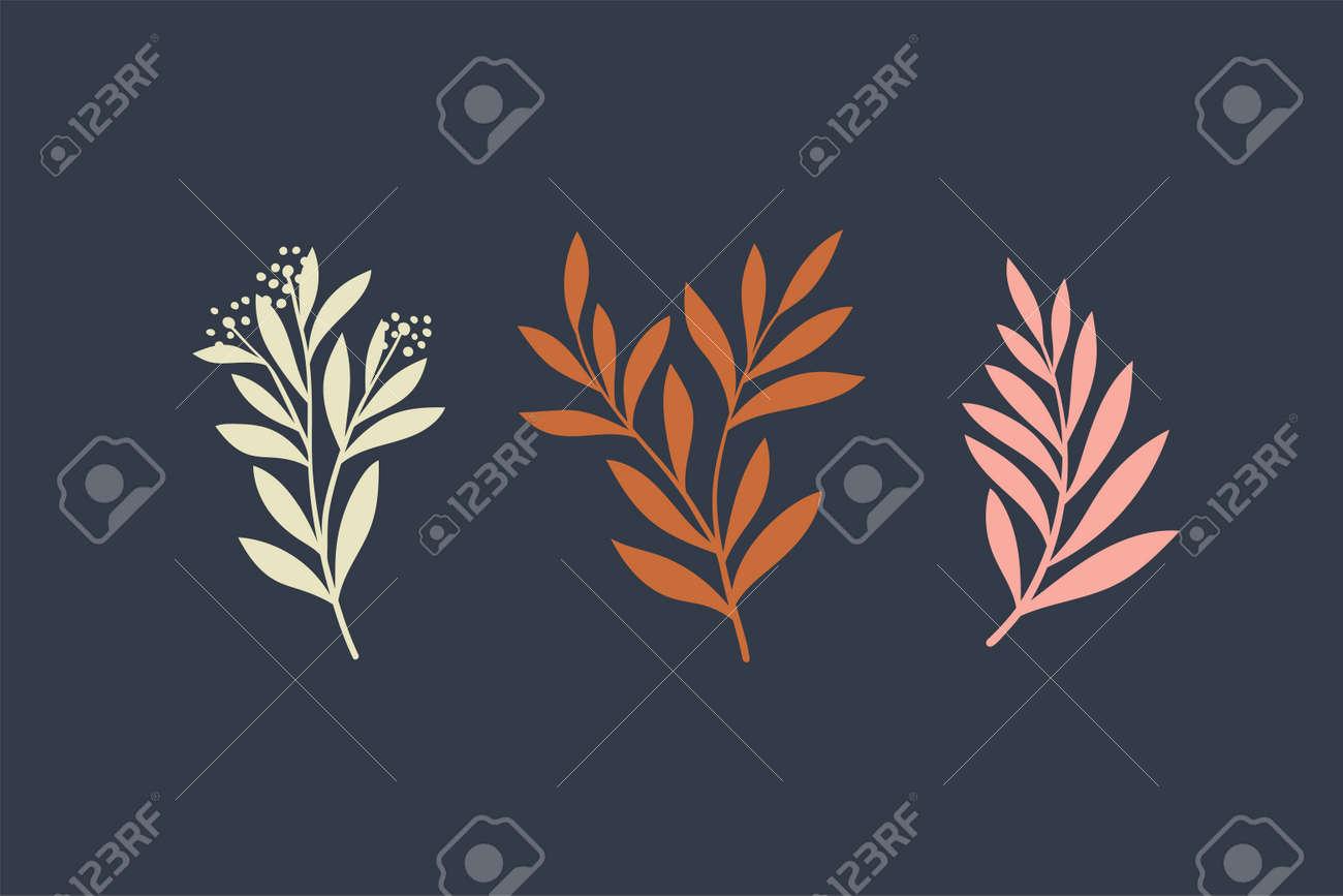 Set of vector floral elements. Hand drawn leaves isolated. Botanical illustration for decoration, print design. - 168265026