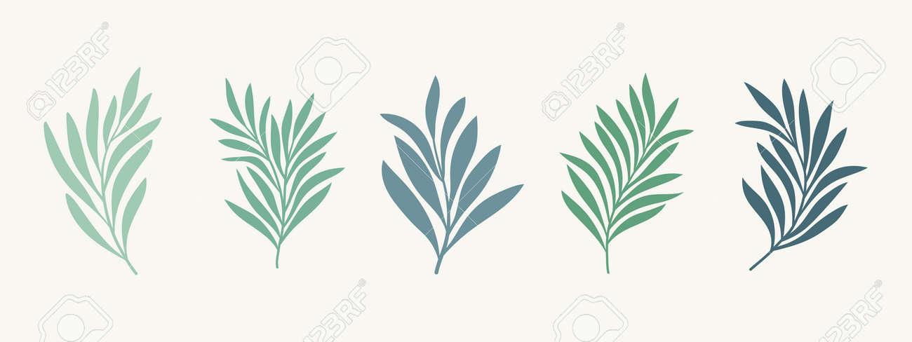 Set of vector floral elements. Hand drawn leaves isolated. Botanical illustration for decoration, print design. - 168265082