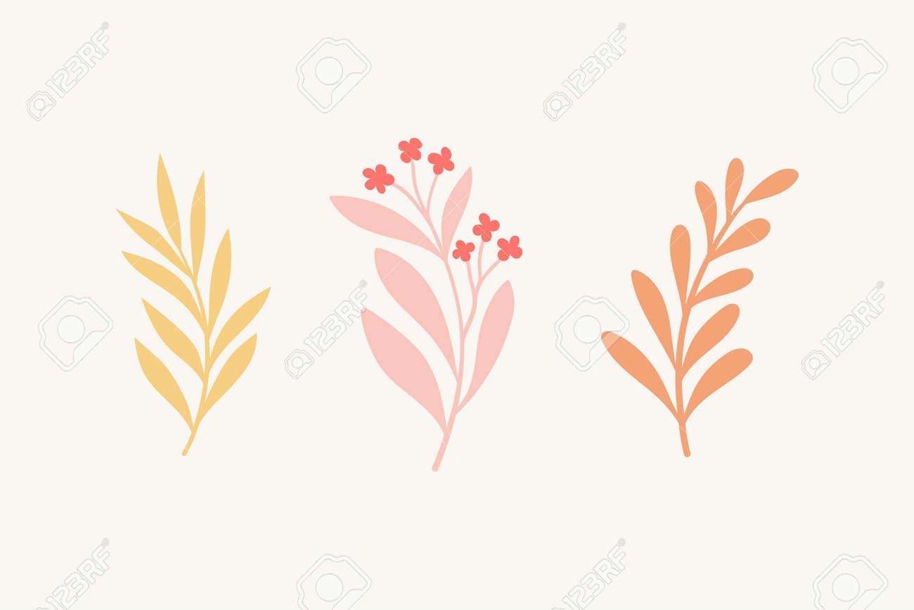 Set of vector floral elements. Hand drawn leaves isolated. Botanical illustration for decoration, print design. - 168265093