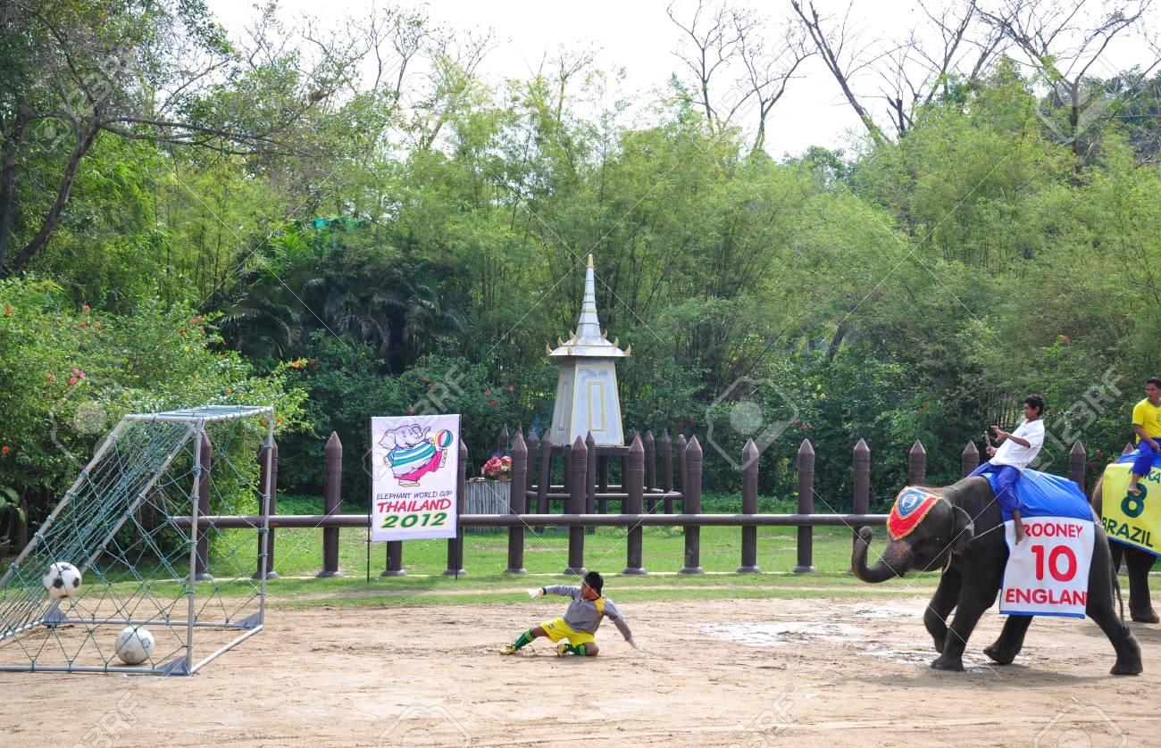 Elephant  show at Samphran Elephant Ground & Zoo, Thailand.   Stock Photo - 11729143