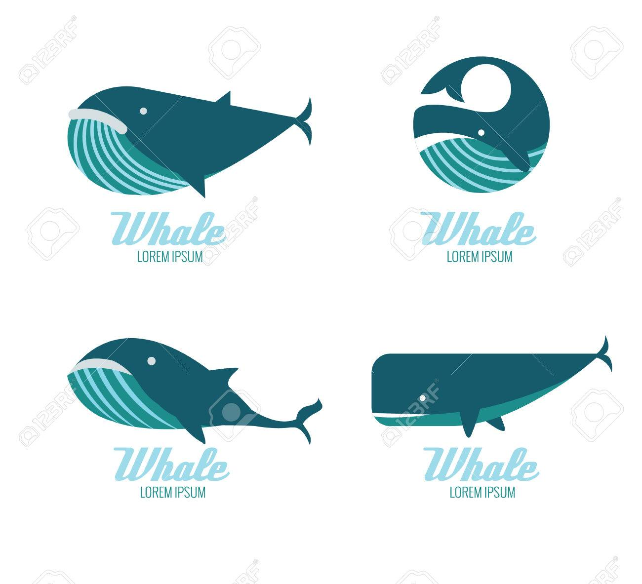 Whales icons. flat design elements. vector illustration - 47600396