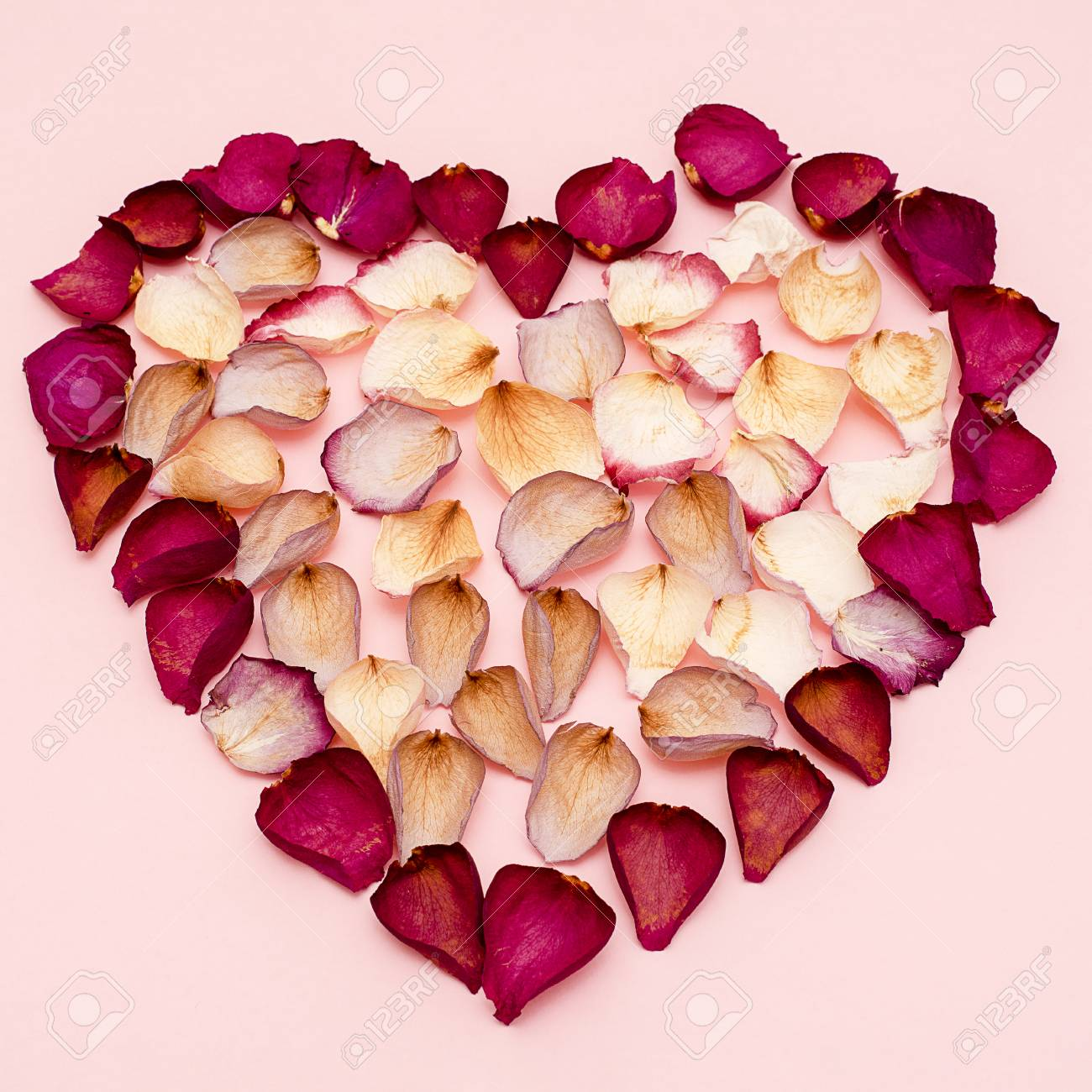 Heart shape lined with dried rose petals on pink background