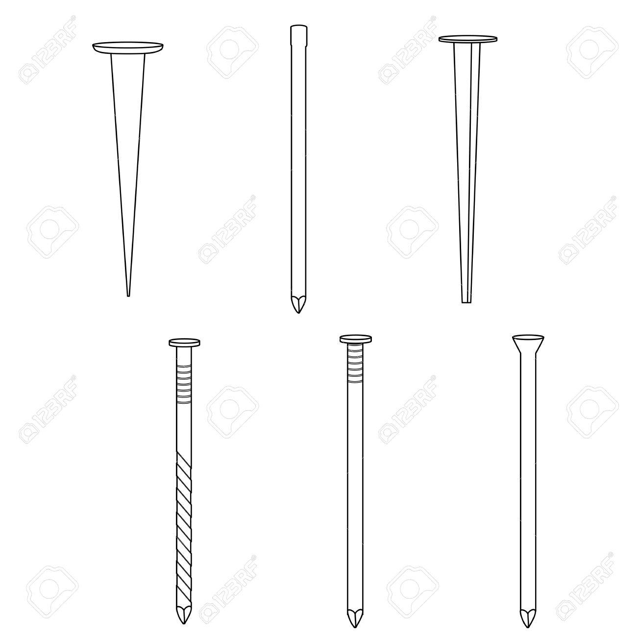 Set Of Different Kinds Of Nails Common Nail, Cut Nail, Finishing ...