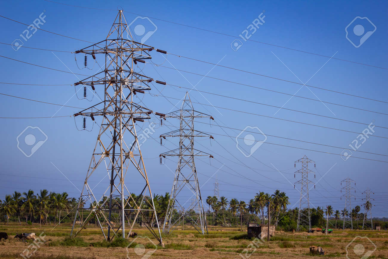 View of electricity pylon along the paddy fields, tamil nadu, India - 165339414